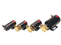 Pompe con motori 12-24 V. CC Johnson Pump