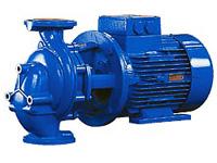 Combilinebloc Johnson Pump