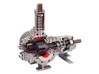 Pompe ad ingranaggi TopGear H - Johnson Pump